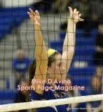 Gallery CIAC Girls Volleyball Class M Tournament SF's - #3 Seymour 3 vs. #7 Granby 1 - Photo # (289)