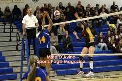 Gallery CIAC Girls Volleyball Class M Tournament SF's - #3 Seymour 3 vs. #7 Granby 1 - Photo # (307)