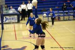 Gallery CIAC Girls Volleyball Class M Tournament SF's - #3 Seymour 3 vs. #7 Granby 1 - Photo # (33)