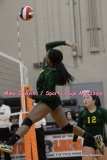 CIAC Girls Volleyball; #5 Goodwin Tech 1 vs. #12 Holy Cross 3 - Photo # (165)