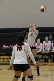 CIAC Girls Volleyball; #5 Goodwin Tech 1 vs. #12 Holy Cross 3 - Photo # (419)