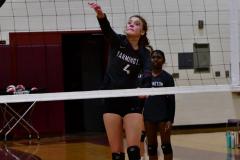 CIAC G. Volleyball; Farmington 3 vs. Hartford Public 0 - Photo # 086
