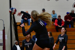 CIAC G. Volleyball; Farmington 3 vs. Hartford Public 0 - Photo # 136