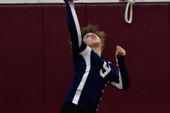 CIAC G. Volleyball; Farmington 3 vs. Hartford Public 0 - Photo # 270