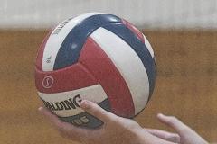 CIAC G. Volleyball; Farmington 3 vs. Hartford Public 0 - Photo # 292