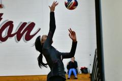 CIAC G. Volleyball; Farmington 3 vs. Hartford Public 0 - Photo # 425