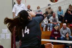 CIAC G. Volleyball; Farmington 3 vs. Hartford Public 0 - Photo # 442