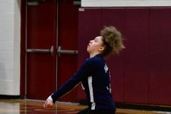 CIAC G. Volleyball; Farmington 3 vs. Hartford Public 0 - Photo # 461
