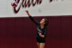 CIAC G. Volleyball; Farmington 3 vs. Hartford Public 0 - Photo # 544