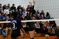 CIAC G. Volleyball; Farmington 3 vs. Hartford Public 0 - Photo # 590