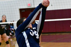 CIAC G. Volleyball; Farmington 3 vs. Hartford Public 0 - Photo # 708