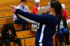 CIAC G. Volleyball; Farmington 3 vs. Hartford Public 0 - Photo # 733