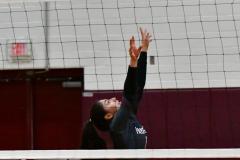 CIAC G. Volleyball; Farmington 3 vs. Hartford Public 0 - Photo # 743