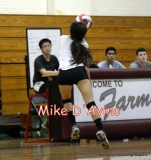 CIAC Girls Volleyball Focused on Farmington 3 vs. Conard 0 - Photo# (28)