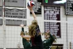 Girls Volleyball Focused on Farmington vs. Maloney - Photo # (11)