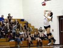 Girls Volleyball Focused on Farmington vs. Maloney - Photo # (17)