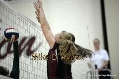 Girls Volleyball Focused on Farmington vs. Maloney - Photo # (19)