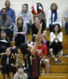 Girls Volleyball Focused on Farmington vs. Maloney - Photo # (33)