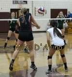 Girls Volleyball Focused on Farmington vs. Maloney - Photo # (35)
