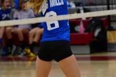 CIAC Girls Volleyball; Wolcott vs. Lewis Mills - Photo # (134)
