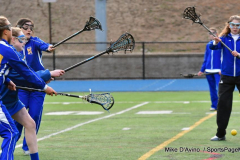 Gallery CIAC GLAX; Newtown vs. New Milford - Photo # 034
