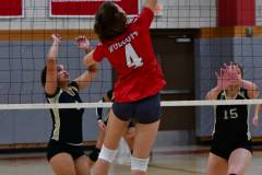 Gallery-CIAC-GVYBL-Wolcott-vs.-Waterbury-Career-Photo-197