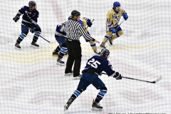 CIACT D3 Ice Hockey; #8 Newtown 7 vs. #9 Wilton 2 - Photo # 1268