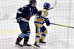 CIACT D3 Ice Hockey; #8 Newtown 7 vs. #9 Wilton 2 - Photo # 1270