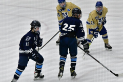 CIACT D3 Ice Hockey; #8 Newtown 7 vs. #9 Wilton 2 - Photo # 1279
