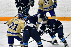 CIACT D3 Ice Hockey; #8 Newtown 7 vs. #9 Wilton 2 - Photo # 1294