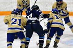 CIACT D3 Ice Hockey; #8 Newtown 7 vs. #9 Wilton 2 - Photo # 1295