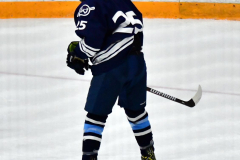 CIACT D3 Ice Hockey; #8 Newtown 7 vs. #9 Wilton 2 - Photo # 1299