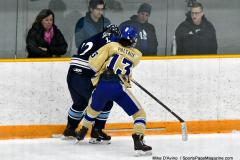 CIACT D3 Ice Hockey; #8 Newtown 7 vs. #9 Wilton 2 - Photo # 1302
