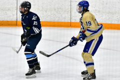 CIACT D3 Ice Hockey; #8 Newtown 7 vs. #9 Wilton 2 - Photo # 1306