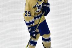 CIACT D3 Ice Hockey; #8 Newtown 7 vs. #9 Wilton 2 - Photo # 1309