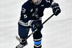 CIACT D3 Ice Hockey; #8 Newtown 7 vs. #9 Wilton 2 - Photo # 1311