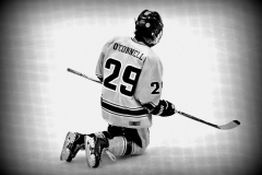 CIACT D3 Ice Hockey; #8 Newtown 7 vs. #9 Wilton 2 - Photo # 1313