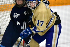 CIACT D3 Ice Hockey; #8 Newtown 7 vs. #9 Wilton 2 - Photo # 1320