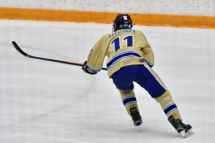 CIACT D3 Ice Hockey; #8 Newtown 7 vs. #9 Wilton 2 - Photo # 1321