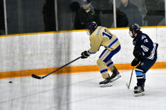 CIACT D3 Ice Hockey; #8 Newtown 7 vs. #9 Wilton 2 - Photo # 1325