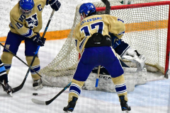 CIACT D3 Ice Hockey; #8 Newtown 7 vs. #9 Wilton 2 - Photo # 1334