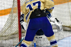 CIACT D3 Ice Hockey; #8 Newtown 7 vs. #9 Wilton 2 - Photo # 1335