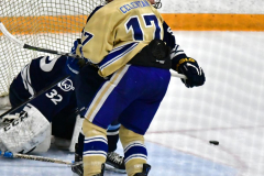 CIACT D3 Ice Hockey; #8 Newtown 7 vs. #9 Wilton 2 - Photo # 1337