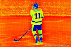 CIACT D3 Ice Hockey; #8 Newtown 7 vs. #9 Wilton 2 - Photo # 1338