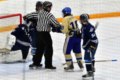 CIACT D3 Ice Hockey; #8 Newtown 7 vs. #9 Wilton 2 - Photo # 1339