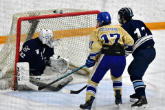 CIACT D3 Ice Hockey; #8 Newtown 7 vs. #9 Wilton 2 - Photo # 1342