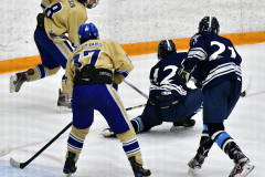 CIACT D3 Ice Hockey; #8 Newtown 7 vs. #9 Wilton 2 - Photo # 1343