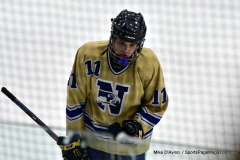 CIACT D3 Ice Hockey; #8 Newtown 7 vs. #9 Wilton 2 - Photo # 1346