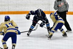 CIACT D3 Ice Hockey; #8 Newtown 7 vs. #9 Wilton 2 - Photo # 1350