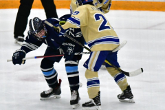 CIACT D3 Ice Hockey; #8 Newtown 7 vs. #9 Wilton 2 - Photo # 1356